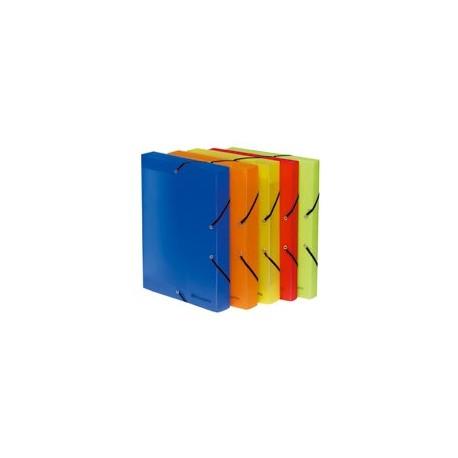 Boîte-de-classement--Linicolor---EXACOMPTA-dos-de25